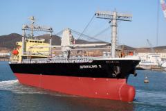 """""""胜利2""""12000吨杂货船"""
